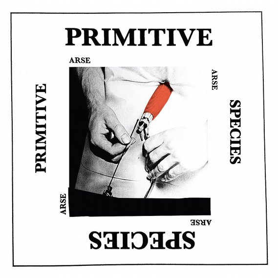 Arse - Primitive Species 12""