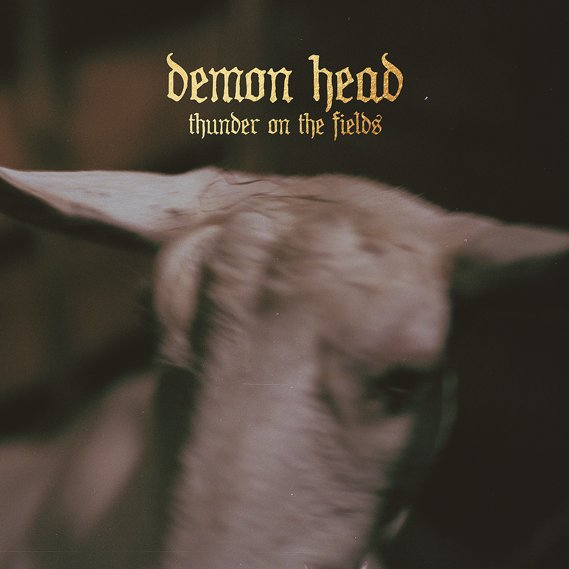 Demon Head - Thunder On The Fields LP Silver