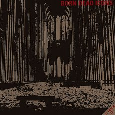 Born Dead Icons - Ruins LP