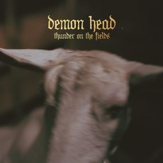 Demon Head - Thunder On The Fields LP Black