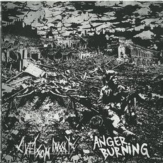 Livet Som Insats / Anger Burning Split 7""