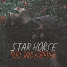Star Horse - You Said Forever LP