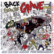 V/A - Back From The Grave Volume 4 LP